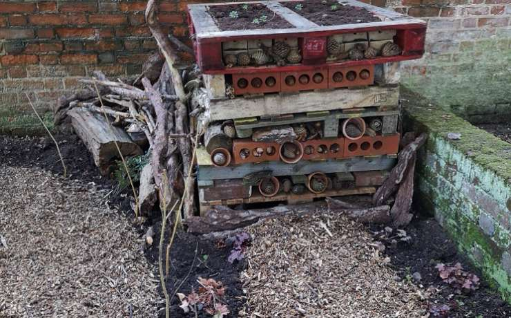 Our Bug Hotels are open for business!